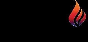 logo swank master chef